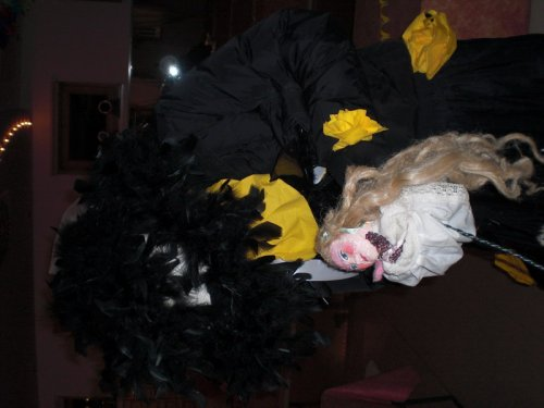 fasching 2009 20100527 2047058105 Festa di Carnevale 2009